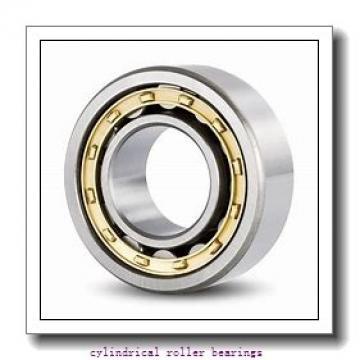 4.273 Inch | 108.522 Millimeter x 7.087 Inch | 180 Millimeter x 1.614 Inch | 41 Millimeter  LINK BELT M1317EX  Cylindrical Roller Bearings