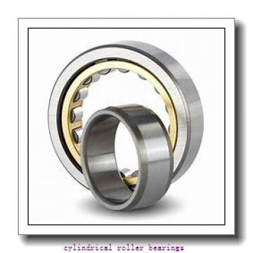 2.559 Inch | 65 Millimeter x 4.724 Inch | 120 Millimeter x 0.906 Inch | 23 Millimeter  LINK BELT MA1213EX  Cylindrical Roller Bearings