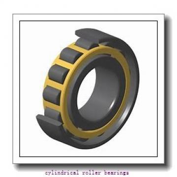 1.181 Inch | 30 Millimeter x 2.835 Inch | 72 Millimeter x 0.748 Inch | 19 Millimeter  LINK BELT MR1306UVW745  Cylindrical Roller Bearings