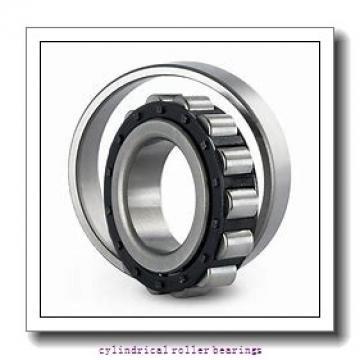 1.378 Inch | 35 Millimeter x 1.731 Inch | 43.97 Millimeter x 1.063 Inch | 26.998 Millimeter  LINK BELT MA5207  Cylindrical Roller Bearings