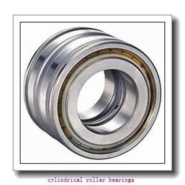 1.378 Inch | 35 Millimeter x 3.15 Inch | 80 Millimeter x 0.827 Inch | 21 Millimeter  LINK BELT MU1307TV  Cylindrical Roller Bearings
