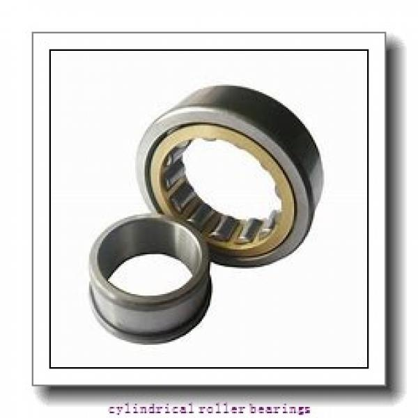 1.378 Inch | 35 Millimeter x 3.15 Inch | 80 Millimeter x 0.827 Inch | 21 Millimeter  LINK BELT MU1307DX  Cylindrical Roller Bearings #1 image