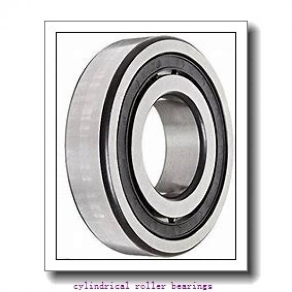 1.378 Inch | 35 Millimeter x 3.15 Inch | 80 Millimeter x 0.827 Inch | 21 Millimeter  LINK BELT MU1307DX  Cylindrical Roller Bearings #2 image