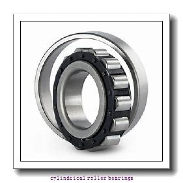 4.331 Inch   110 Millimeter x 5.234 Inch   132.944 Millimeter x 2.75 Inch   69.85 Millimeter  LINK BELT MA5222  Cylindrical Roller Bearings #2 image